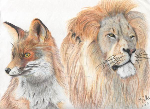 lion_and_fox