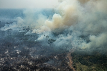 COLNIZA, MATO GROSSO, BRAZIL. Aerial view of burned areas in the Amazon rainforest, in the city of Colniza, Mato Grosso state. COLNIZA, MATO GROSSO, BRASIL. Vista aérea de áreas queimadas e focos de incêndio na Amazônia, na cidade de Colniza, Mato Grosso. (Photo: Victor Moriyama / Greenpeace)